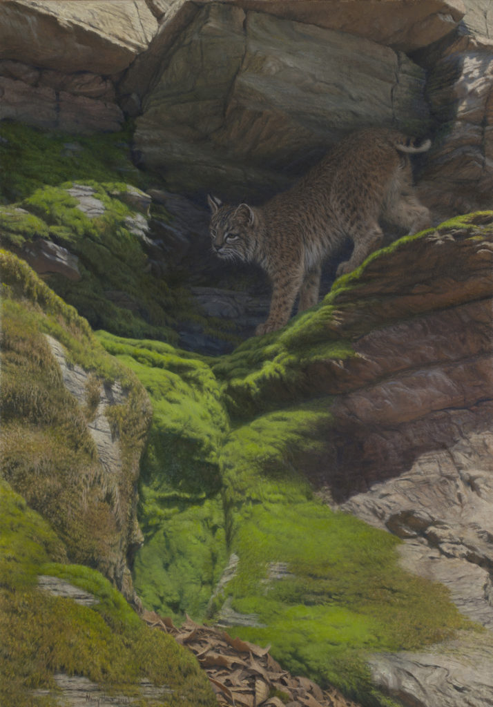 Of A Secret Nature • 2010 • 30 x 21 • Oil on linen • Bobcat • Available Tilting at Windmills Gallery