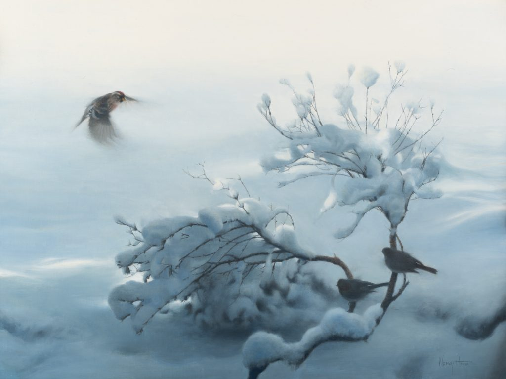 After the Storm • 2021 • 18 x 24 • oil on linen • juncos and redpoll